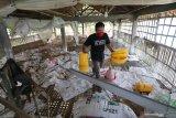 Kementan catat pembelian ayam peternak oleh swasta mencapai 5 persen