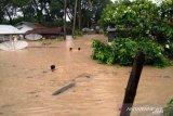 Sungai Batang Bayang meluap, ratusan rumah di Ujung Gading Lembah Melintang terendam banjir (Video)