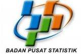 BPS catat inflasi pada November 2020 sebesar 0,28 persen