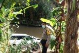 Satu unit mobil pajero terjun ke dalam sungai di Binjai, Sumut