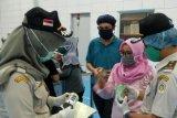 Pandemi COVID-19 tidak pengaruhi nilai ekspor Kepri