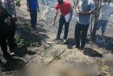 Warga Tanjungpinang tewas terpanggang di lahan miliknya