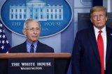 Presiden AS: beberapa negara bagian akan cabut pembatasan  terkait corona