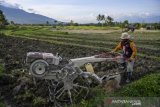 Relokasi anggaran untuk pertanian selama pandemi  COVID-19