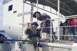 Debora Calamita, Kartini muda di laut