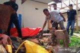 Polisi temukan indikasi penambangan emas ilegal di lokasi sembilan warga Ranah Pantai Cermin tertimbun