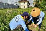 Peringati Hari Bumi, warga binaan Lapas perempuan tanam 50 pohon