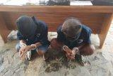 Ditpolair Polda Lampung tangkap dua tersangka pengedar bahan peledak bom ikan