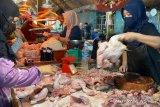 Harga di kandang hanya Rp12.000/Kg, Asosiasi prakirakan bakal banyak peternak ayam gulung tikar di Palembang