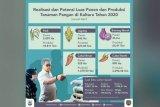 Pengembangan tiga daerah penyangga pangan IKN di Kaltara