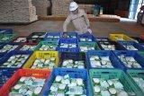 PTPN III sesuaikan harga jual gula mengikuti ketentuan Kemendag