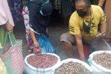 Harga bawang merah makin tak terjangkau, karena tembus Rp50 ribu perkilogram di Dharmasraya