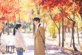 Kisah cinta Lee Min-ho di