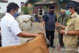 Pemkab Sigi upayakan keberlanjutan kegiatan peternakan warga
