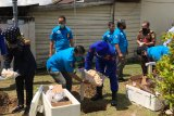 Polda Kalbar musnahkan barang bukti ribuan  telur penyu