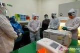Kasus COVID-19 di Sulteng hari ini  bertambah 11 orang