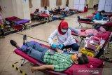 Stok darah PMI  DKI Jakarta menipis