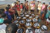 Kemenko Maritim: lima masalah utama perikanan akibat COVID-19