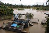Sungai meluap, lima kecamatan di Langkat dilanda banjir