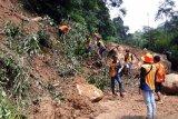 Puluhan desa di Sumsel terancam terisolir akibat tanah longsor