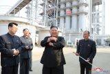 Korsel: Kim Jong Un tidak menjalani operasi