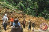Jalur Palu-Napu Poso  sudah bisa kembali dilewati kendaraan