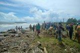 Bangkai babi berserakan di Pantai Tagaule Nias, pejabat dan warga gotong menguburinya