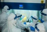 Menteri BUMN: 50 ribu alat PCR COVID-19 diproduksi pekan kedua Mei