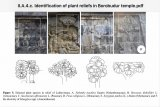 Relief Borobudur ungkap 63 spesies tumbuhan era Jawa kuno