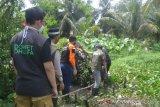 Dompet Dhuafa salurkan bantuan ke warga Plaju Palembang tinggal di kawasan rawa
