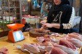Harga ayam potong di Palembang melonjak Rp32.000/Kg