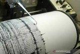 Gempa bumi magnitudo 5,8 guncang Wellington Selandia Baru