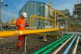 PGN-Pertamina sepakati penyesuaian harga gas bumi