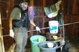 Tim Iknampu Polres Biak ungkap pabrik produksi minuman lokal Sopi