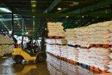 PT Pusri salurkan pupuk urea bersubsidi 500 ribu ton lebih