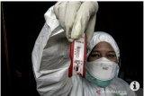 LBH Bandarlampung minta rapid test prioritaskan PDP dan tenaga kesehatan