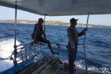 Empat warga hilang di perairan  Sabu Raijua