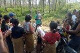 Perusahaan sawit ambil langkah hingga bantu ketahanan pangan Orang Rimba