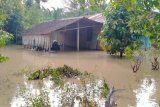 Sungai Kotoran meluap, tiga kecamatan di Kabupaten Langkat banjir