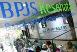 Anggota DPR: iuran BPJS jangan dinaikkan
