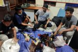Polisi gerebek judi sabung ayam di Mamberamo Tengah