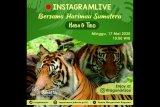 Taman Margasatwa Ragunan kembali suguhkan wisata virtual lewat medsos