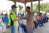 Kabupaten Jayapura kembangkan tanaman kakao