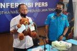 BNN ungkap pengiriman narkotika yang dimasukan dalam boneka lolos dari pengawasan PSBB