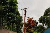 PLN pastikan keandalan listrik jelang Lebaran