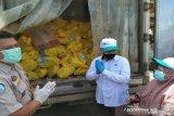 BKIPM Kendari berikan 5 ton ikan kepada masyarakat terdampak COVID-19