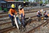 Pekerja melakukan perawatan jalur Kereta Api (KA) di kawasan Stasiun KA Madiun, Jawa Timur, Jumat (22/5/2020). PT KAI Daerah Operasi 7 Madiun memaksimalkan perawatan jalur saat seluruh KA reguler dibatalkan perjalanannya guna mendukung upaya pencegahan penyebaran COVID-19, sehingga pekerja bisa lebih leluasa bekerja dengan tak adanya KA reguler yang lewat. Antara Jatim/Siswowidodo/zk.