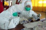 PDP meninggal di Kota Sorong hasil laboratorium positif COVID-19