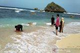 Pelaku wisata Gunung Kidul perlu dilibatkan susun pedoman
