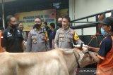 Empat pencuri sapi dibekuk Polres Batang